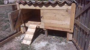 Pallet Chicken Coop (2)