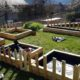 Pallet Garden Creation